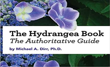 hydrangea-book-store