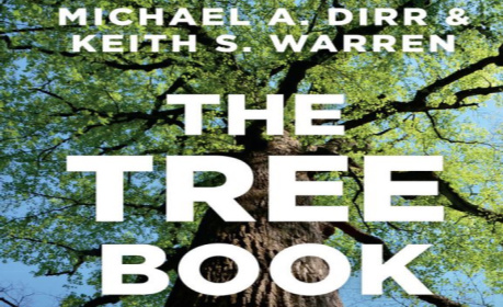 tree-book-store